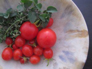 tomatoesnbowl
