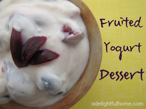 fruited yogurt dessert
