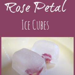 How to Make Rose Petal Ice Cubes | aDelightfulHome.com
