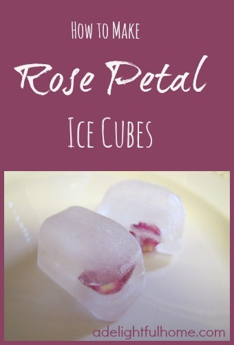 "Close up view of ice cubes with rose petals frozen in them. Text overlay says, ""How to Make Rose Petal Ice Cubes""."