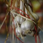 Three Ways to Use Garlic Medicinally