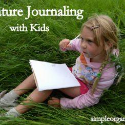 SOnaturejournaling-2