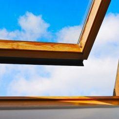 window-sxc