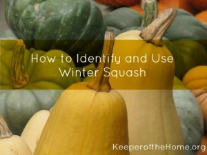 how-to-identify-and-use-winter-squash
