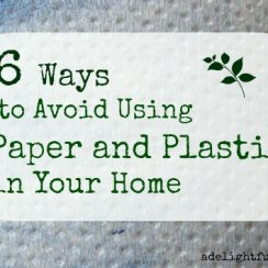 6 Ways to Avoid Using Paper and Plastic in Your Home| aDelightfulHome.com