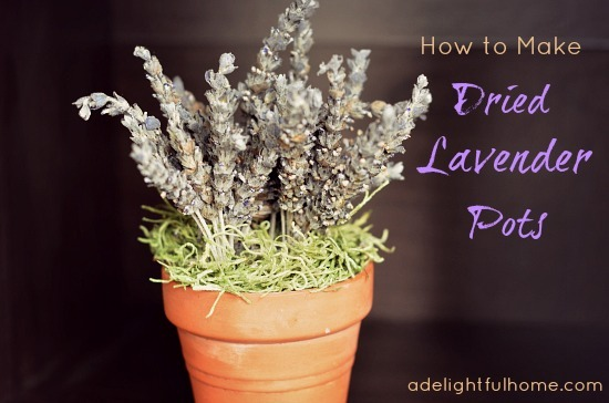 how to make dried lavender pots