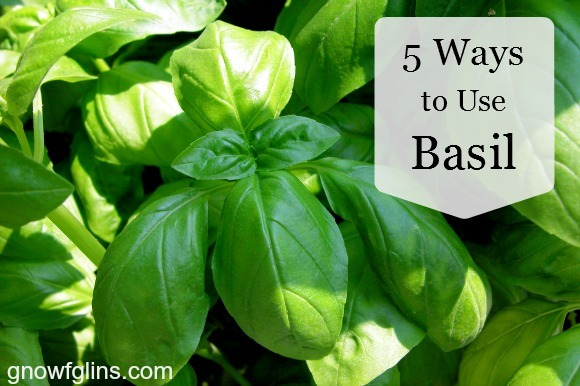 5 ways to use Basil - Gnowfglins
