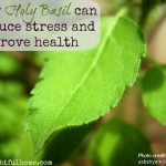 How Holy Basil can reduce stress and improve health