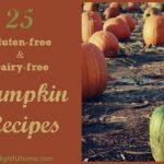 25 Gluten-free & Dairy-free Pumpkin Recipes