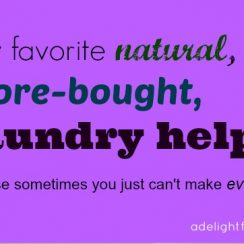 natural-store-bought-laundry-helps
