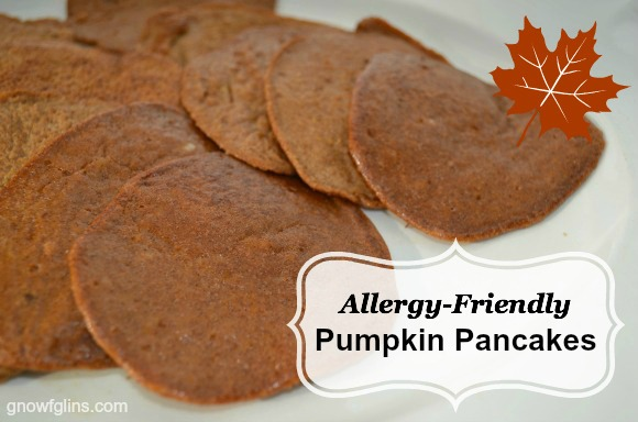 Allergen Friendly Pumpkin Pancakes | Adelightfulhome.com