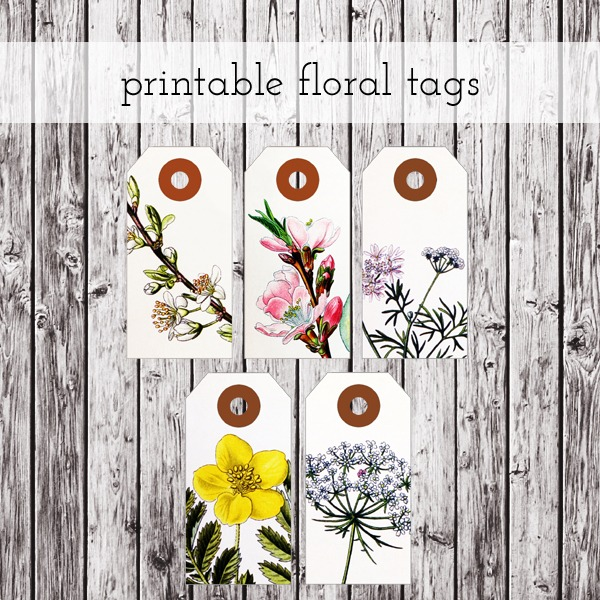 Printable labels for homemade gifts a delightful home olympus digital camera negle Image collections