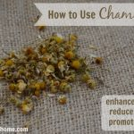 How to Use Chamomile to Reduce Stress and Enhance Beauty