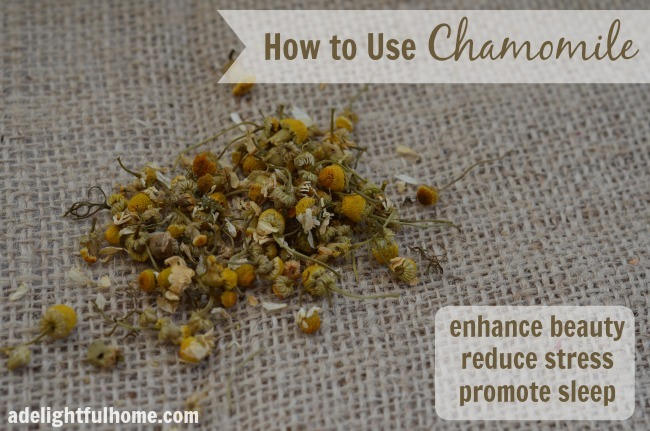 how to use chamomile