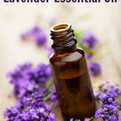 10 uses for lavendar oil | aDelightfulHome.com