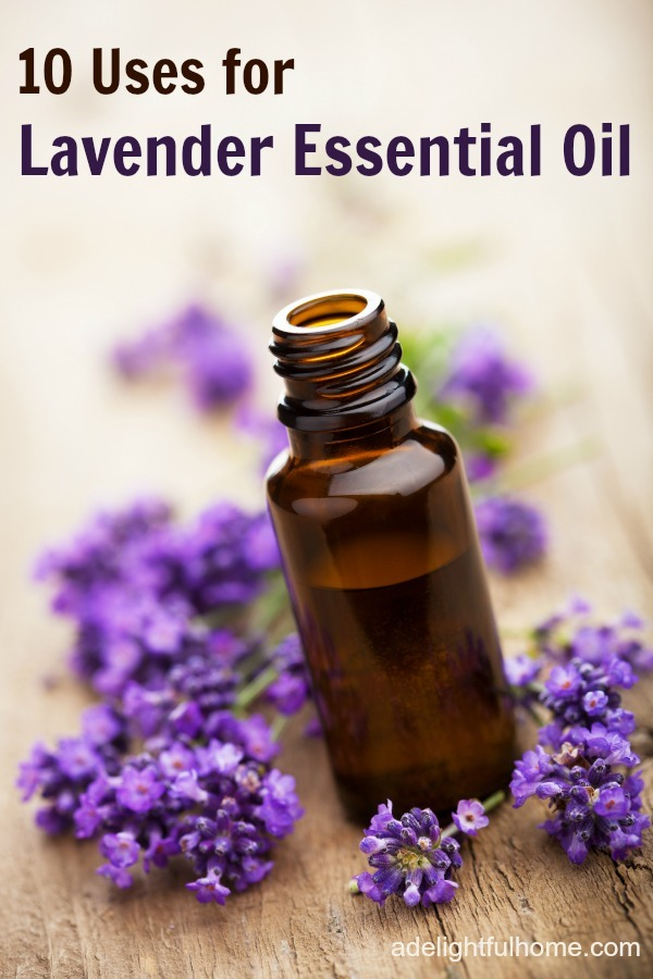 10 Uses for Lavender Essential Oil | aDelightfulHome.com