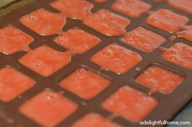 homemade gummies in silicone mold