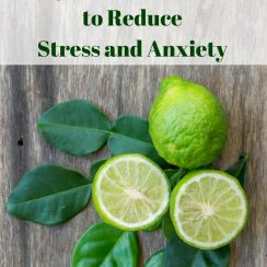 How to Use Bergamot Essential Oil to Reduce Stress & Anxiety | aDelightfulHome.com