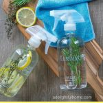 FREE Green Cleaning Kit (to Make Cleaning More Enjoyable)