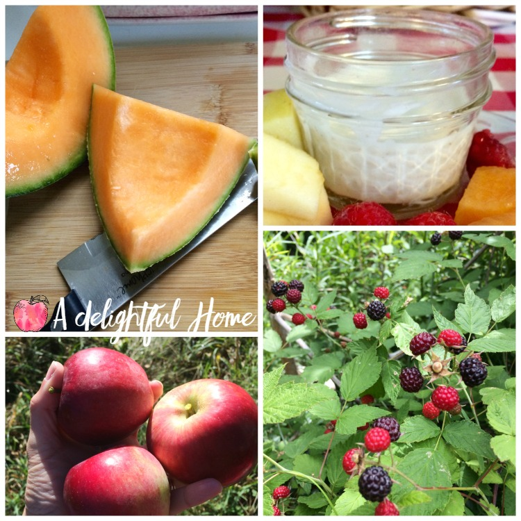 Simple & Healthy Fruit Dip Recipe | aDelightfulHome.com