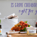 Is Grove Collaborative Right for You?