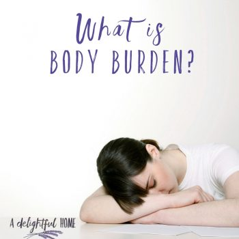What is Body Burden? | ADelightfulHome.com