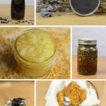 Build Your Own Apothecary