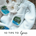 Green Up Your Laundry with Grove Collaborative