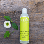 Natural Non-Toxic Shampoo and Conditioners