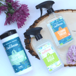 Aunt Fannie's Non-Toxic Cleaning Products