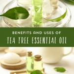 5 Ways to Use Tea Tree Essential Oil