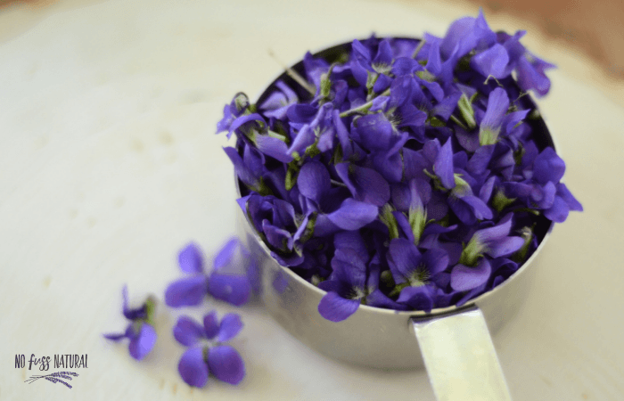 freshly picked violets in measuring cup
