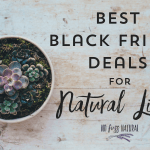 Healthy Black Friday Deals