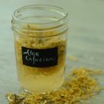 How to Infuse Aloe Vera