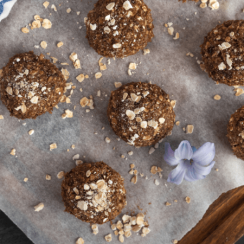 chocolate protein balls with oats